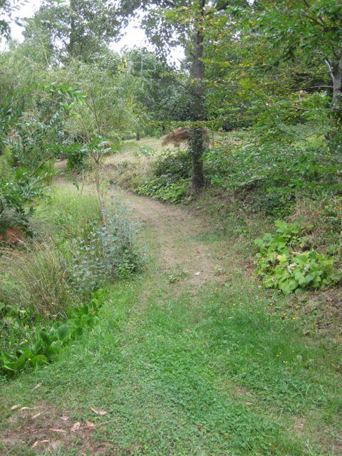 pathway 3