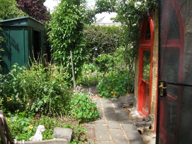 Tour of my garden 2010 3