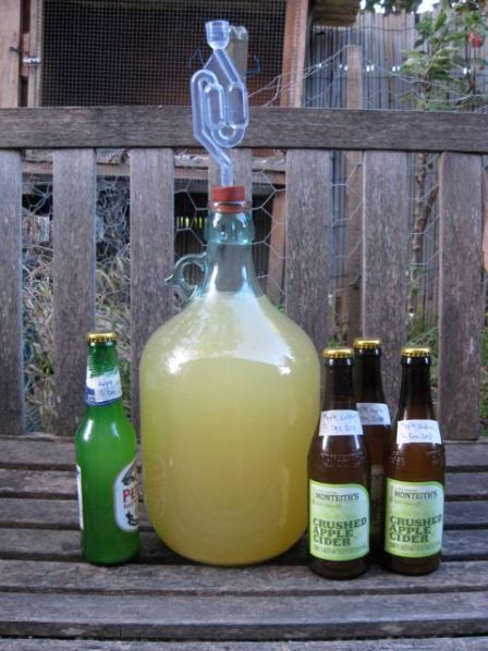Alcoholic Apple Cider - Homebrew