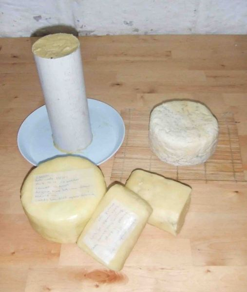 Cheese and Soap 2